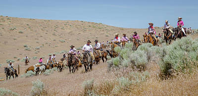 Photograph - Reno Cattle Drive 17 by Rick Mosher