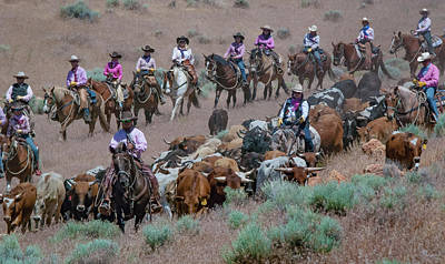 Photograph - Reno Cattle Drive 18 by Rick Mosher