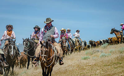 Photograph - Reno Cattle Drive 4 by Rick Mosher