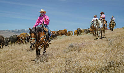 Photograph - Reno Cattle Drive 5 by Rick Mosher