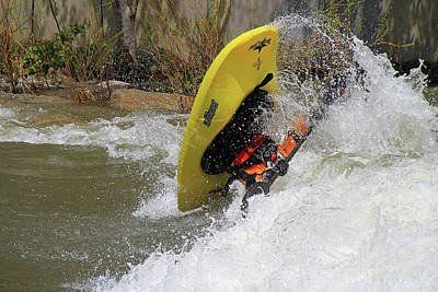 Photograph - Reno River Festival by Donna Kennedy