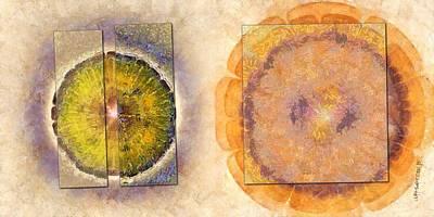 Slate Pattern Painting - Renounces Woof Flowers  Id 16164-103148-64321 by S Lurk