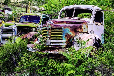 Photograph - Reo Truck Relic by Steven Bateson