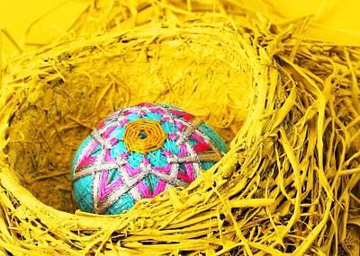 Photograph - Replacement Egg by Stephen Dorsett