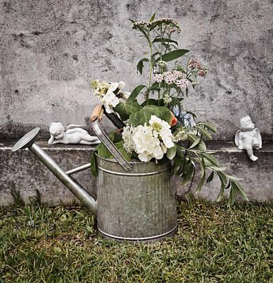 Photograph - Repose by Linda Brown