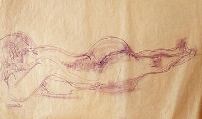 Drawing - Repose by Phyllis Hanson Lester