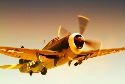 Republic P-47 Thunderbolt 2011 Chino Air Show Original by Gus McCrea
