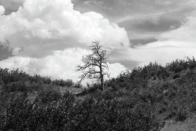 Photograph - Requiem by John Freidenberg