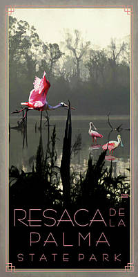 Spoonbill Digital Art - Resaca De La Palma State Park by Jim Sanders