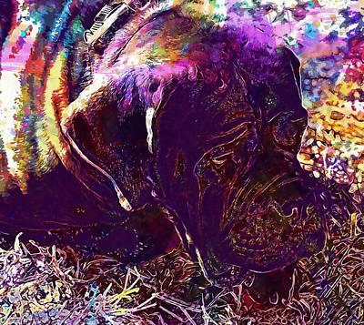 Dog Rescue Digital Art - Rescued Dog Animal Dog Pet Face  by PixBreak Art