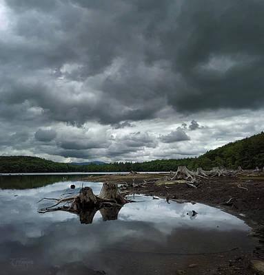 New Hampshire Photograph - Reservoir Logs by Jerry LoFaro