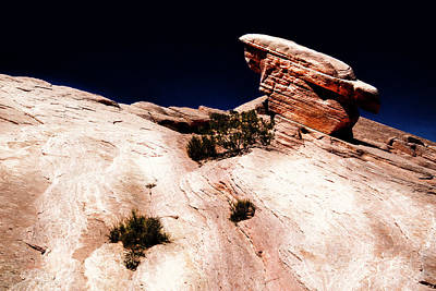 Photograph - Resistant Boulder Valley Of Fire by Frank Wilson