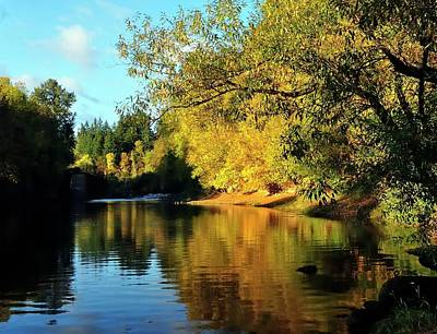 Photograph - Yamhill River Reflections by Jerry Sodorff