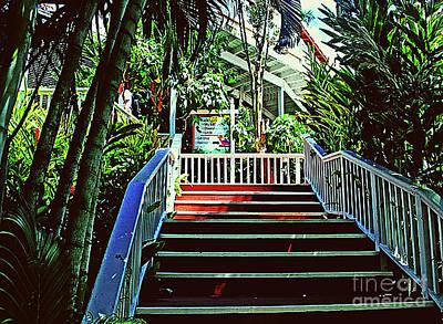 Photograph - Resort Stairway by Gary Wonning