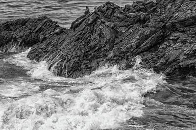 Photograph - Rest And Relax Bw by Robert Hebert