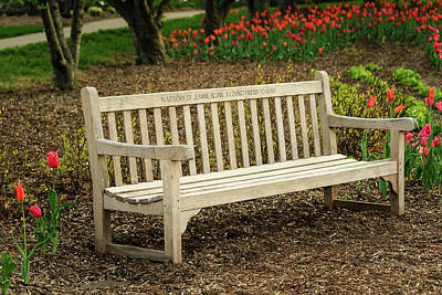 Photograph - Rest - Bench Provided by Joni Eskridge