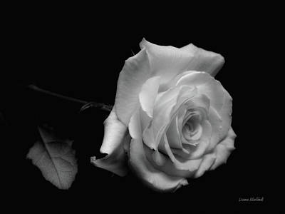 Photograph - Rest In Peace by Donna Blackhall