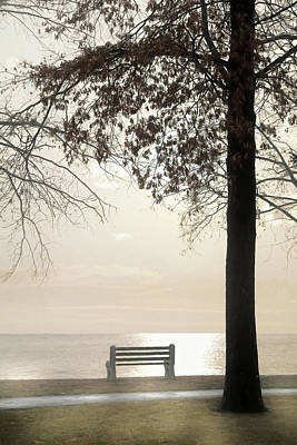 Photograph - Rest by Lori Deiter