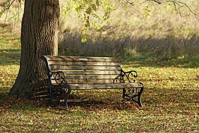 Photograph - Rest Under The Walnut Tree by Debbie Oppermann