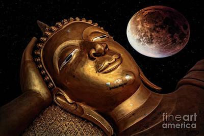 Photograph - Restful Buddha by Adrian Evans