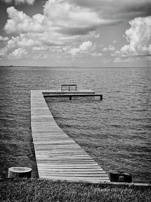 Photograph - Restful Place by Charles McKelroy