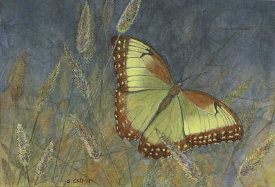 Mixed Media - Resting Butterfly by Sandy Clift