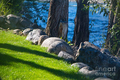 Photograph - Resting Carefully Landscape At The Hotel Rio Vista In Winthrop B by Omaste Witkowski
