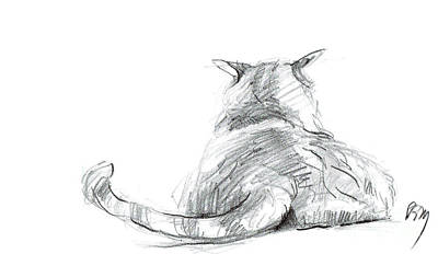 Drawing - Resting Cat by Paul Miller