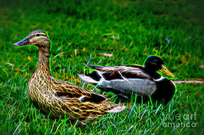 Art Print featuring the photograph Resting Ducks by Mariola Bitner