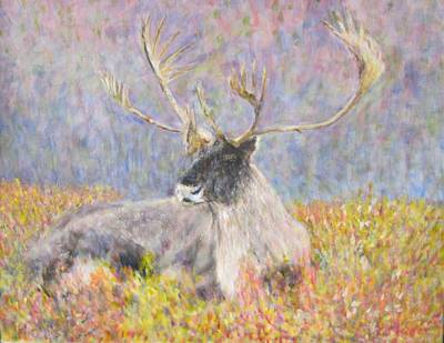 Painting - Resting Elk by Glenda Crigger