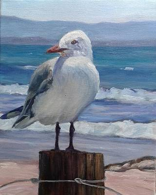 Painting - Resting Gull by Candi Hogan