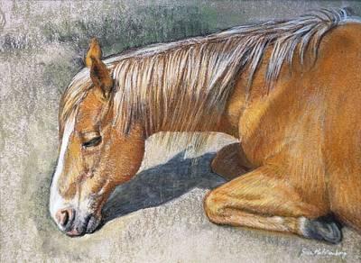 Pastel - Resting Horse by Sue Halstenberg