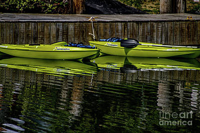 Photograph - Resting Kayaks by William Norton