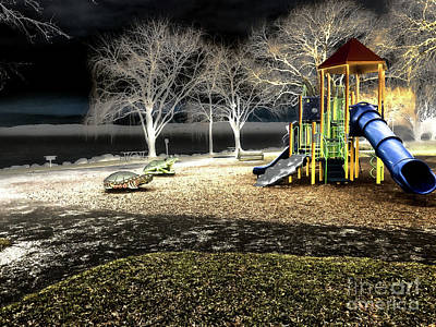Photograph - Resting Lakeside Playground by William Norton
