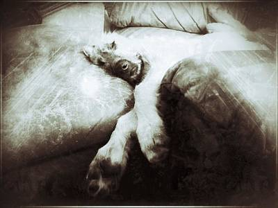 Resting Art Print by Michael L Kimble