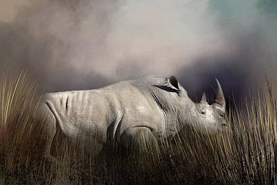 Photograph - Resting Rhino by Donna Kennedy