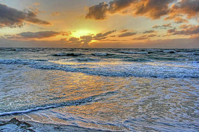 Photograph - Restless by HH Photography of Florida