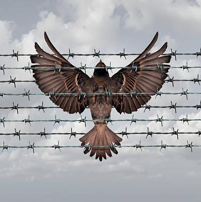 Restricted Freedom Art Print by Dumitru Pogolsa