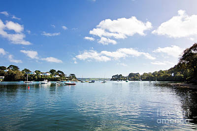 Photograph - Restronguet Creek In Autumn by Terri Waters