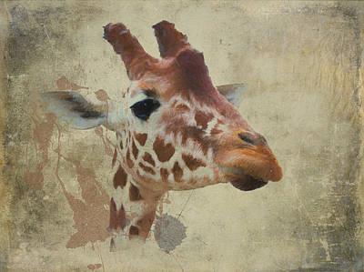 Digital Art - Reticulated Giraffe by Roger Lighterness