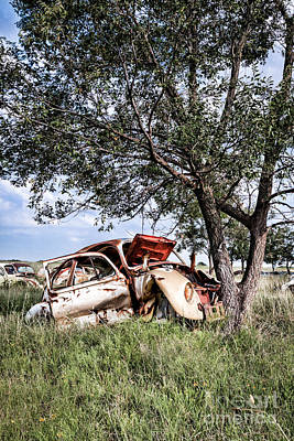 Photograph - Retired Bug by Lawrence Burry
