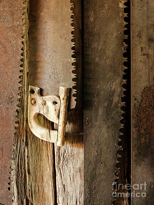 Photograph - Retired Cross Saws by Lexa Harpell
