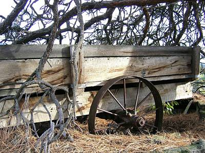 Photograph - Retired Farm Wagon by Will Borden