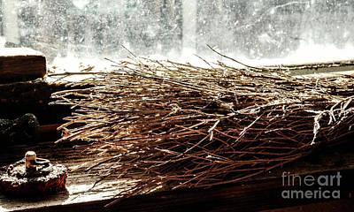 Photograph - Retired Handmade Brush by Lexa Harpell