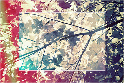 Photograph - Retro Branch  by Angie Tirado