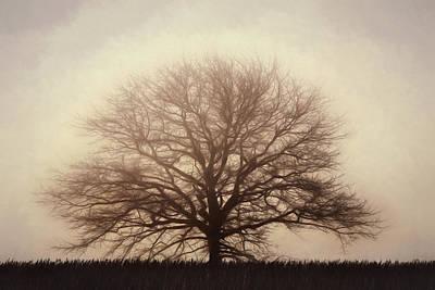 Digital Art - Retro Foggy Tree by Lori Deiter