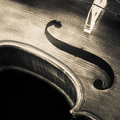 Violin Photograph - Retro Musical Curves by Iordanis Pallikaras
