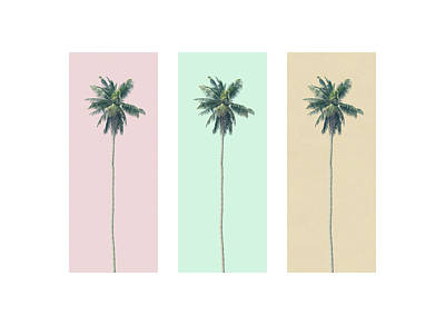 Photograph - Retro Palms by Andrew Paranavitana