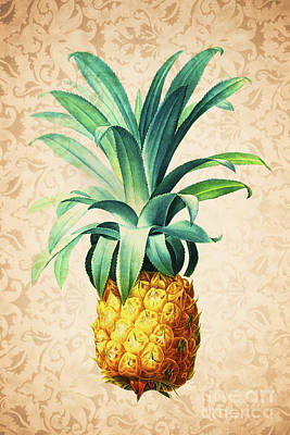Painting - Retro Pineapple by Delphimages Photo Creations