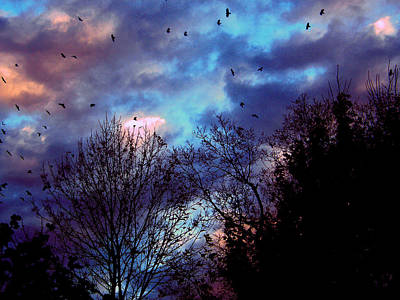 Return Of The Crows Art Print by Martin Morehead